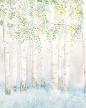 Soft Birches II by James Wiens