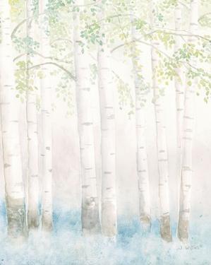 Soft Birches III by James Wiens