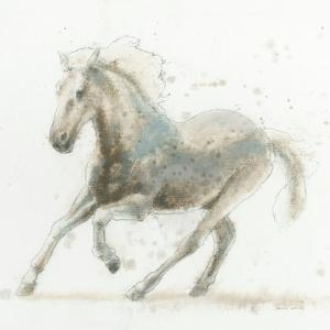Stallion II by James Wiens