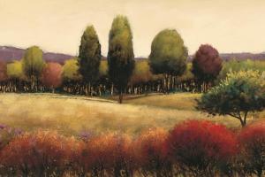 Vista by James Wiens