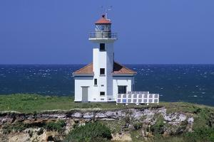 Oregon Coast, Cape Arago Lighthouse, on an Islet Off Gregory Point by Jamie And Judy Wild