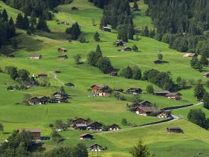 Switzerland, Bern Canton, Grindelwald, Apline Farming Community by Jamie And Judy Wild