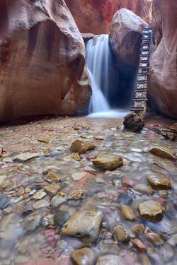 Utah, Kanarraville, Kanarra Creek Canyon and Waterfall by Jamie And Judy Wild