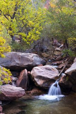 Utah, Kanarraville, Kanarra Creek Canyon by Jamie And Judy Wild