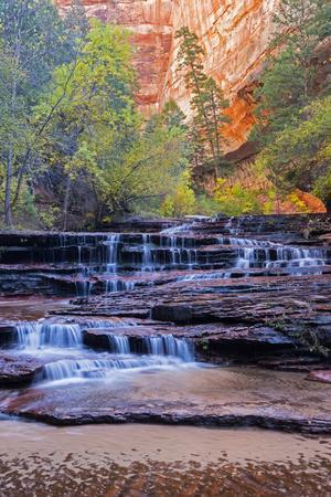 Utah, Zion National Park, Water Cascading Through Left Fork of North Creek