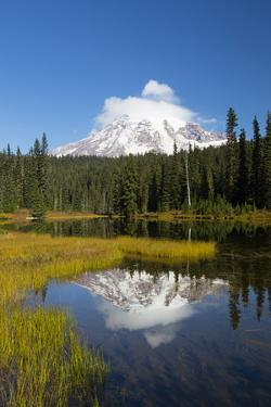 Wa, Mount Rainier National Park, Mount Rainier Reflected in Reflection Lake by Jamie And Judy Wild