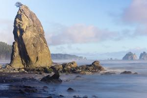 Wa, Olympic National Park, Rialto Beach, Seastack by Jamie And Judy Wild