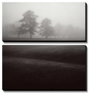 Fog Tree Study II by Jamie Cook