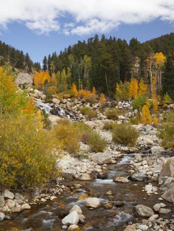 Alluvial Fan, Rocky Mountain National Park, Colorado, USA by Jamie & Judy Wild