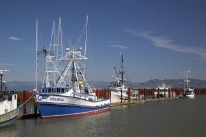 Fishing Boats, East Basin Moorage, Columbia River, Astoria, Oregon, USA by Jamie & Judy Wild
