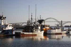 Fishing Boats with Yaquina Bay Bridge in Background, Newport, Oregon, USA by Jamie & Judy Wild