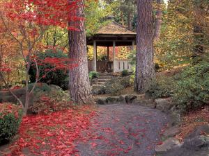Japanese Gazebo with Fall Colors, Spokane, Washington, USA by Jamie & Judy Wild