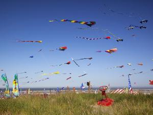 Kites, International Kite Festival, Long Beach, Washington, USA by Jamie & Judy Wild