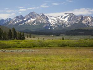 Meadow and Mountains, Sawtooth National Recreation Area, Idaho, USA by Jamie & Judy Wild