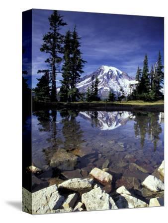 Mt. Rainier Reflected in Tarn, Mt. Rainier National Park, Washington, USA by Jamie & Judy Wild