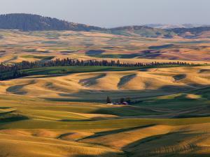 Palouse Farmland, Whitman County, Washington, USA by Jamie & Judy Wild