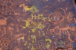 Petroglyphs, V Bar V Heritage Site, Arizona, USA by Jamie & Judy Wild
