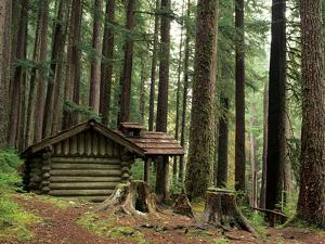 Rainforest and Sol Duc Shelter, Sol Duc Valley, Olympic National Park, Washington, USA by Jamie & Judy Wild