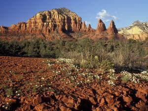 Red Rock Country, Sedona, Arizona, USA by Jamie & Judy Wild