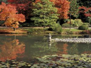 Reflecting Pool in Japanese Garden, Seattle, Washington, USA by Jamie & Judy Wild