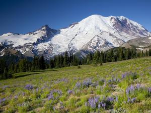 Steamboat Prow Formation, Mount Rainier National Park, Washington, USA by Jamie & Judy Wild