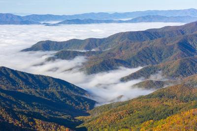 Tennessee, North Carolina, Great Smoky Mountains NP, Newfound Gap by Jamie & Judy Wild