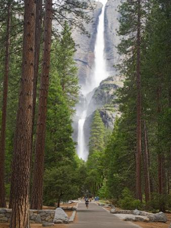 Upper and Lower Yosemite Falls. Yosemite National Park, CA by Jamie & Judy Wild