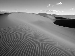 USA, California. Death Valley National Park, Mesquite Flats Sand Dunes. by Jamie & Judy Wild