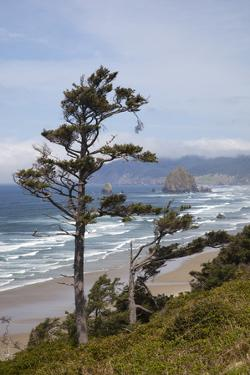 View of Haystack Rock and Cannon Beach, from Highway 101, Oregon, USA by Jamie & Judy Wild
