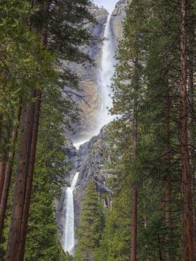 Yosemite Falls, Yosemite National Park, California, Usa by Jamie & Judy Wild