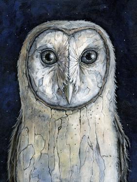 Barn Owl I by Jamin Still