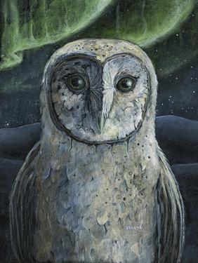 Barn Owl II by Jamin Still