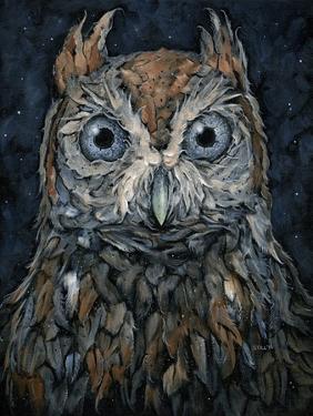 Screech Owl by Jamin Still