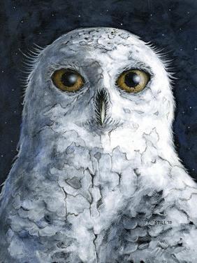 Snowy Owl by Jamin Still