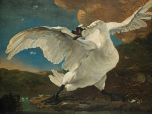 The Threatened Swan, before 1652 by Jan Asselijn