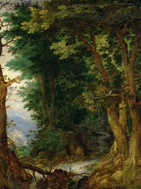 Forest Landscape, 1605-1610 by Jan Brueghel the Elder