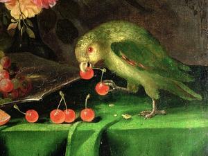 Still Life of Fruit and Flowers, Detail of a Parrot (Detail) by Jan Davidsz. de Heem