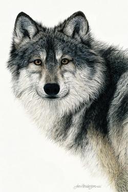 Silent Watch by Jan Henderson
