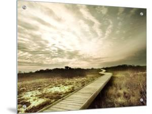 Boardwalk Winding over Sand and Brush by Jan Lakey