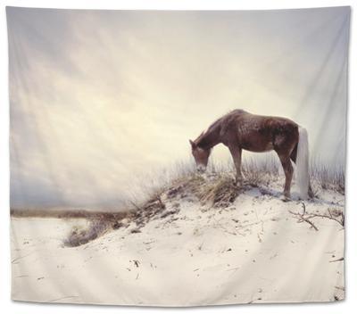 Chocolate Horse Feeding from Dry Brush
