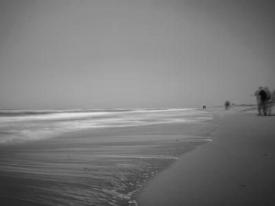 Golden Beach Landscape by Jan Lakey