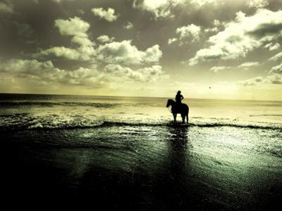 Horseback Riding in the Tide