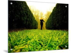 Walking through Garden Maze by Jan Lakey