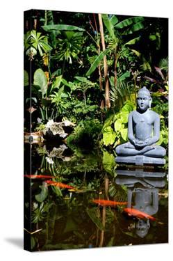 Buddha Garden by Jan Michael Ringlever