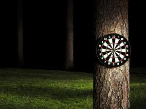 Dartboard in Forest at Night by Jan Stromme