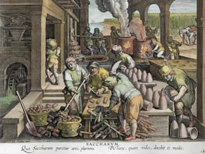A Sugar Mill and the Production of Sugar Loaves, plate 14 from 'Nova Reperta'