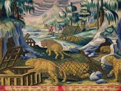 Capturing Leopards, Plate 15 from Venationes Ferarum, Avium, Piscium