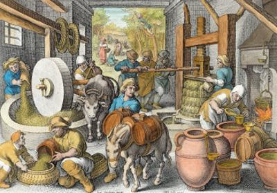 The Production of Olive Oil, Plate 13 from Nova Reperta