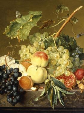 Fruit, Hazelnuts and Hollyhocks on a Marble Ledge by Jan van Huysum
