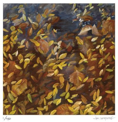 Windfall by Jan Wagstaff